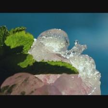 hielo24 30