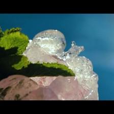 vasos-hielo-764356